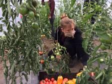 """Le Forem et la Ville de Charleroi unissent leurs forces pour """"une alimentation saine"""""""