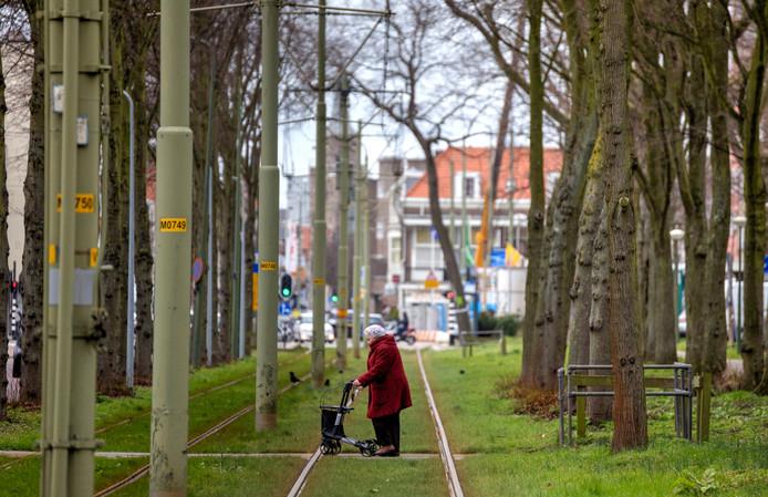 Tram 1 op de scheveningseweg tussen bomen