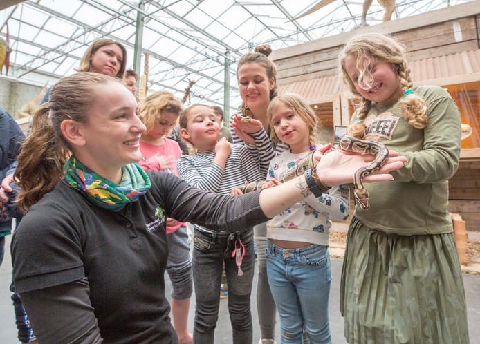Berkenhof Tropical Zoo won de titel al zeven keer en werd ook dit jaar verkozen tot Leukste Uitje van Zeeland.