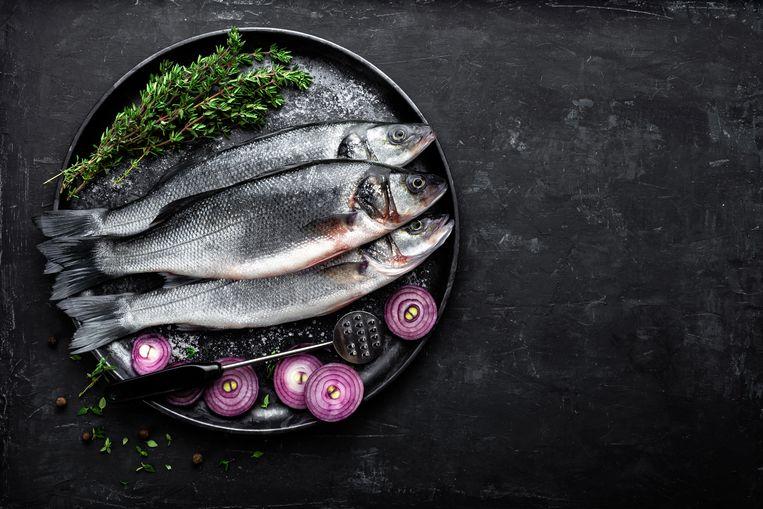Zeebaars, de meest geserveerde vis van de rode lijst (bedreigde over overbeviste soorten). Beeld Getty Images/iStockphoto