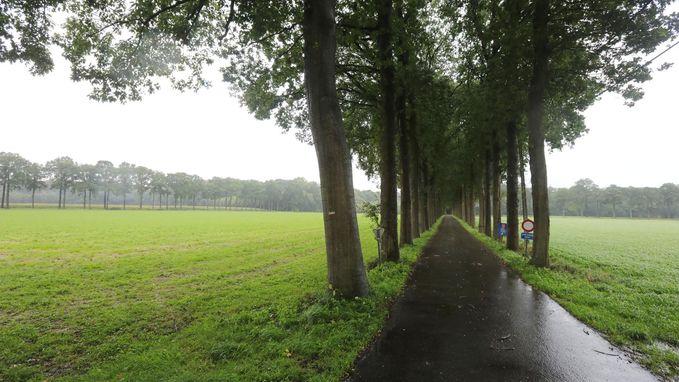 Wordt Bulskampveld een nationaal park?