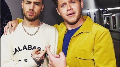 Liam Payne probeert 'Slow Hands' van vriend Niall Horan te zingen en mislukt