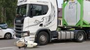 Bromfietser gewond nadat hij in aanrijding komt met vrachtwagen