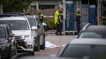 Nederland glijdt af tot maffiastaat