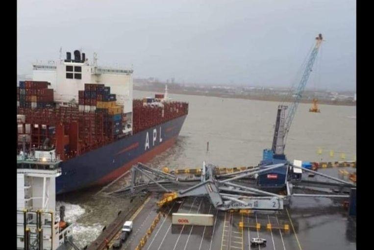 De reusachtige havenkraan stortte volledig in elkaar.