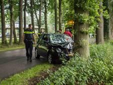 Auto botst tegen boom in Laag-Soeren