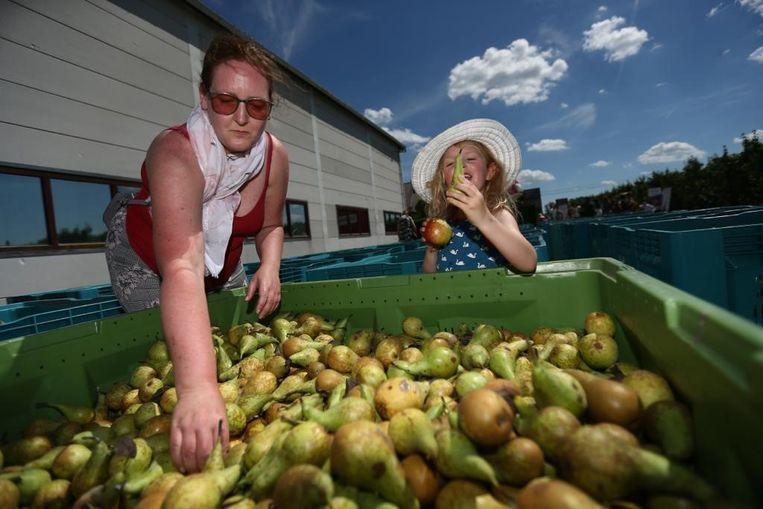 Nancy Theunis uit Lubbeek had gehoord van de actie op Facebook. Zij wil het fruit uitdelen aan haar familie en buren.