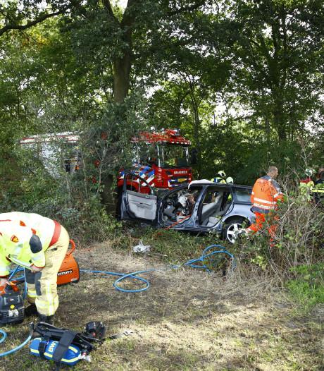Auto vliegt in brand na crash tegen boom, inzittende ernstig gewond