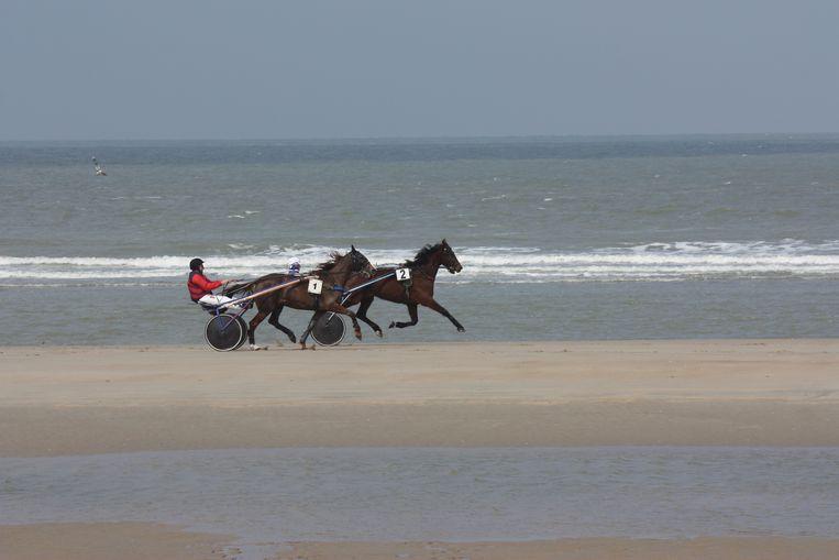 De paardenrennen worden opnieuw georganiseerd aan de waterlijn op het strand van De Haan