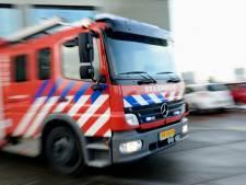 Autobrand in IJsselstein snel geblust, schade blijft beperkt