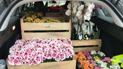 Tuincentrum schenkt elke bewoner Huize Proventier een bloem
