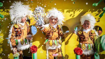 Plannen om carnaval te laten erkennen als immaterieel erfgoed op luid gejuich onthaald