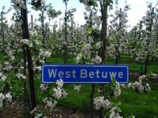 Inwoners West Betuwe praten mee over regels nieuwe gemeente