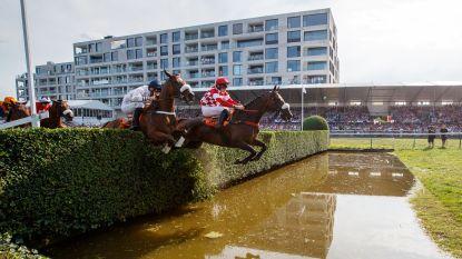 Waregem Koerse compleet afgelast: geen paardenkoersen op 1 september