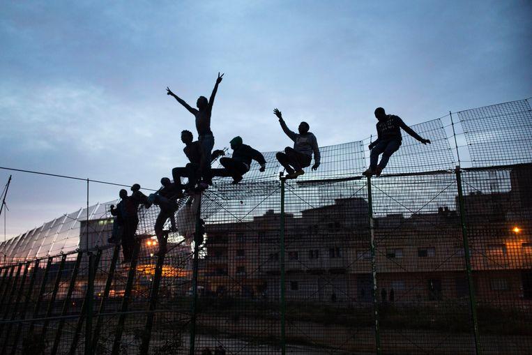 Afrikaanse migranten op zoek naar een beter bestaan klimmen over een hek op de grens tussen Marokko en de Spaanse exclave Melilla, in een poging asiel te verkrijgen binnen de EU. Beeld AP