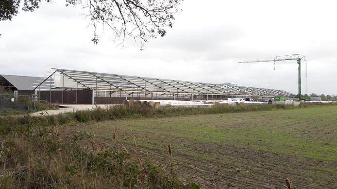 Naast de megastal aan de Van de Veldenweg die sinds 2015 operationeel is, wordt nu ook een tweede, nog grotere stal gebouwd.
