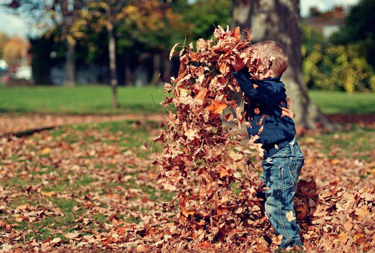 De Leukste Activiteiten Met Je Kinderen In De Herfstvakantie