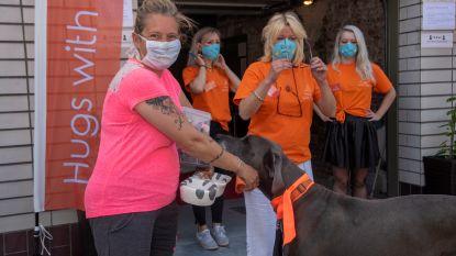 """Eerste voedselbank voor dieren opent deuren: """"De nood is hoog"""""""