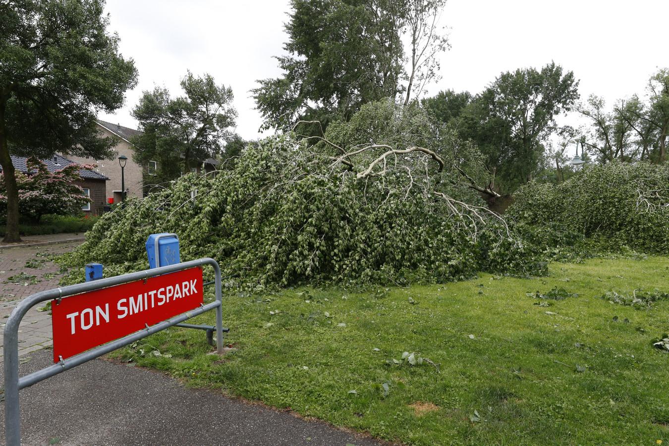 Ton Smitspark in Eindhoven