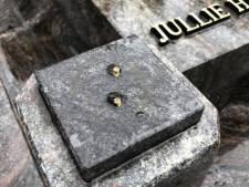 Woede om van graf gestolen vogel op Osse begraafplaats: 'Mensen hebben nergens meer respect voor'