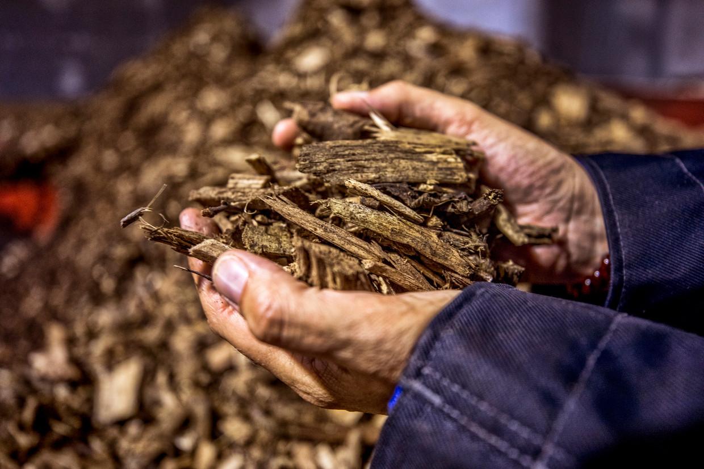 Houtsnippers worden verbrand in BioWarmteCentrale de Purmer.  Beeld Raymond Rutting / de Volkskrant