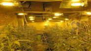 Nederlander zet 'naïeveling' aan cannabisplantage te bouwen
