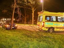 Auto rijdt tegen boom in Zwammerdam, inzittende gewond
