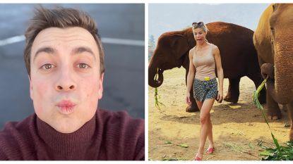 SHOWBITS. Een kusje van Niels en de olifanten van Jess Donckers
