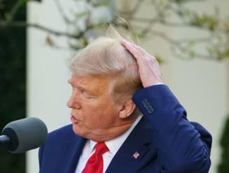 Loser.com leidt (opnieuw) naar Wikipediapagina van Donald Trump