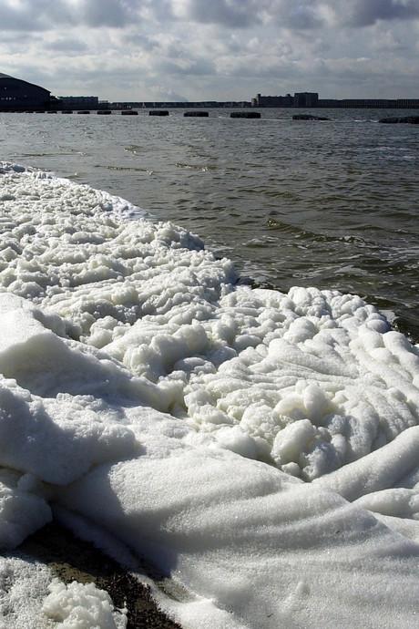Negatief zwemadvies voor Binnenschelde in Bergen op Zoom, bacteriën aangetroffen in water