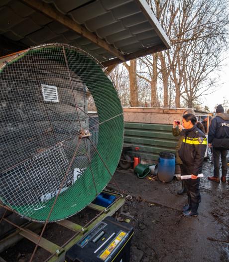 Verdachten van organiseren hanengevechten weer vrij