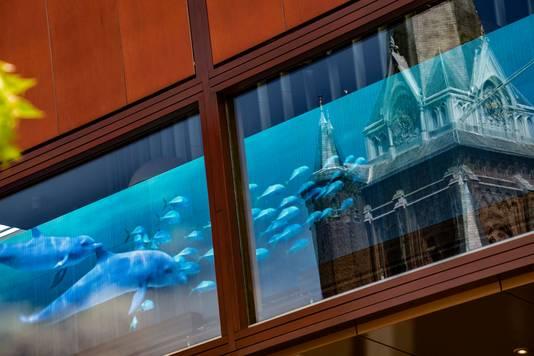 Dolfijnen en vissen die voorbij zwemmen: Tilburg heeft er opeens een diepzeeaquarium bij.