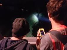Muisstil loeren naar het fladderende wonder: mee op vleermuisexcursie in Waalwijk