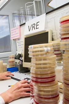 Weer uitbraak besmettelijke VRE-bacterie in ASz