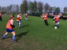 Voetballers Hulsel moeten uitwijken door schade aan sportvelden