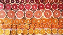 Ochtendhumeur? 15 perfectionistische kleurenfoto's waar je meteen vrolijk van wordt