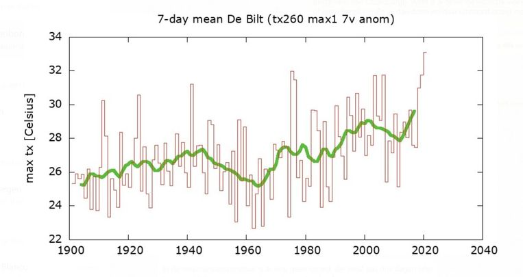 Volgens cijfers van het KNMI is het met 33,1 graden de warmste week ooit gemeten in De Bilt. Het vorige record stamt uit 1975. Beeld KNMI