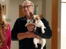 """Le chien de la série """"Modern Family"""" est mort"""