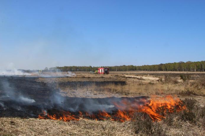 De natuurbrand bij Schaarsbergen.