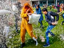 Tweede Zuid Hollands kampioenschap kussengevechten