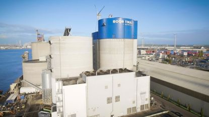 Moutproducent Boortmalt uit Antwerpen wereldleider na overname Cargill