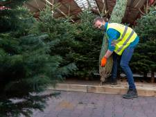 Kerstbomen zat in Zoetermeer, nu nog wat kopers