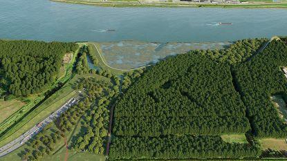 Stap dichter bij nieuwe Scheldetunnel: offertes aannemers moeten in oktober binnen zijn