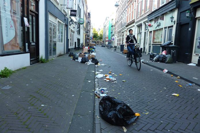 Door meeuwen opengescheurde vuilniszakken in Den Haag.