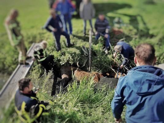 Een paar rende in 's-Gravendeel de sloot in en verdronk.