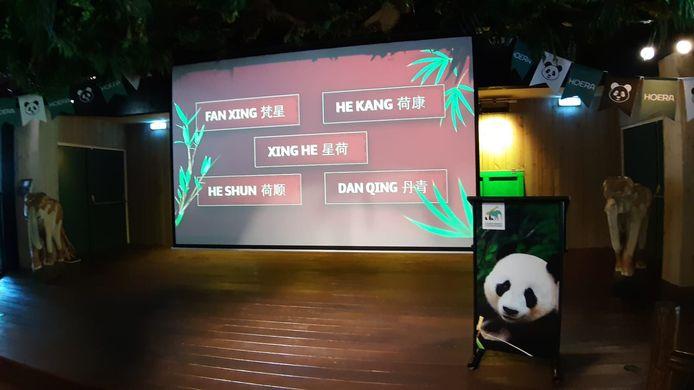 De bekendmaking van de naam van de onlangs geboren panda in Ouwehands Dierenpark in Rhenen.
