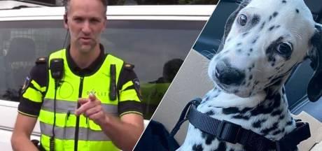 Luchtig nieuws: politie komt met 'oplichtvideo' in het Twents & dj-pup nu al populair