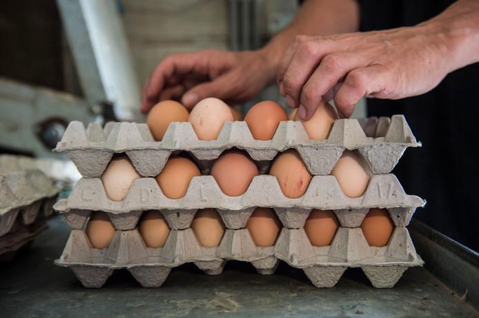 Gratis uitdelen is altijd nog beter en goedkoper dan volkomen veilig voedsel laten vernietigen, menen de boeren