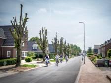Onverwachte bomenkap: Beatrixstraat is allure kwijt