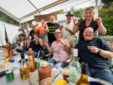 Delftse Appelpop Basterds terug in Rivierenland